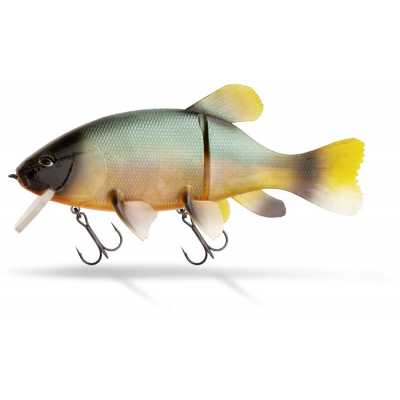 Quantum Freak of Nature Hybrid Tench
