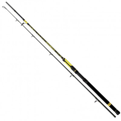 Black Cat Perfect Passion Boat Spin 2,40m 50-190g