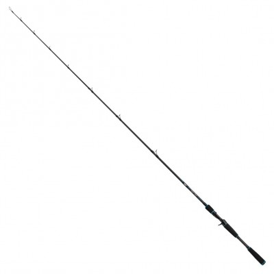 Salmo Slider Stick Rod 1,80m 40-100g