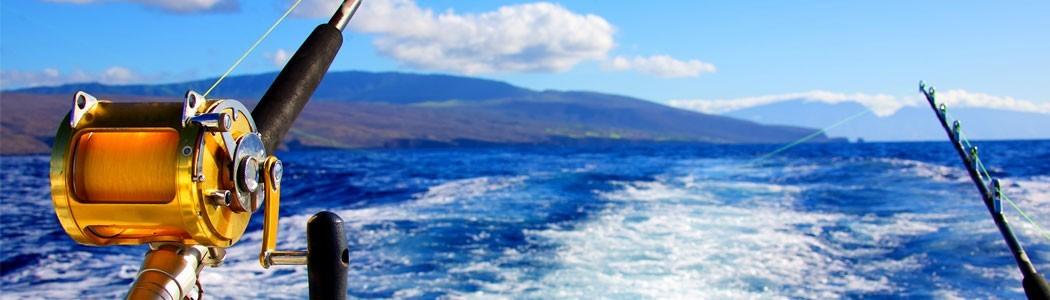 Nipos Angelshop - Kategorie Meeresangeln Systeme